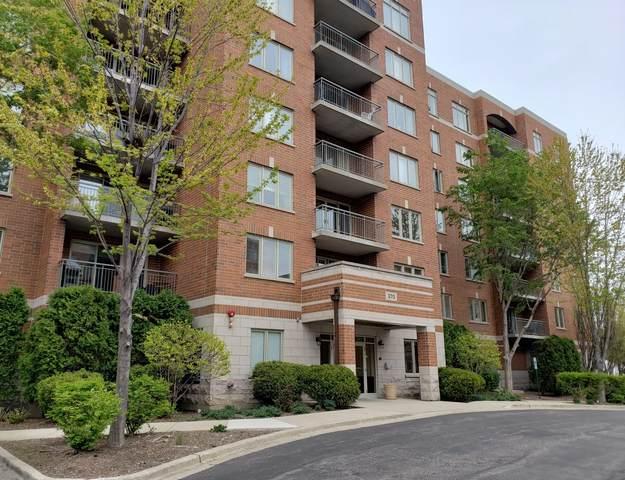 370 S Western Avenue #301, Des Plaines, IL 60016 (MLS #11052210) :: Helen Oliveri Real Estate