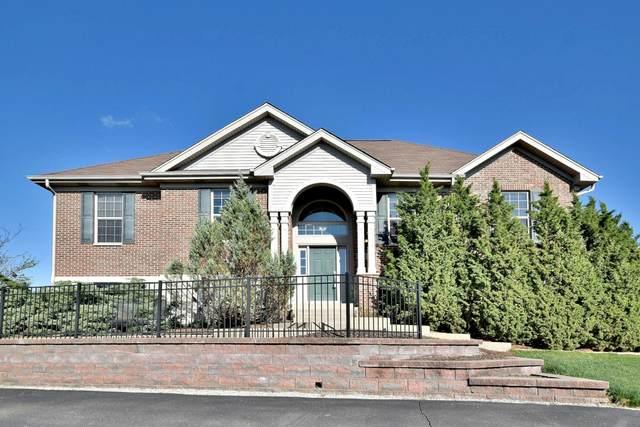 2813 Blakely Lane, Naperville, IL 60540 (MLS #11052386) :: Helen Oliveri Real Estate