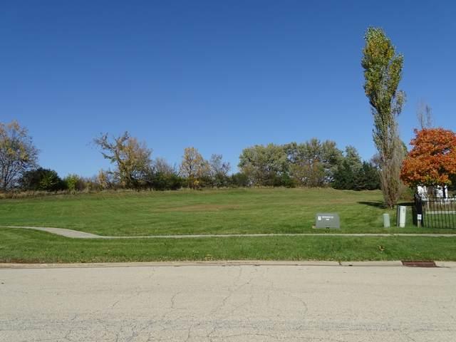 797 Sunburst Court, New Lenox, IL 60451 (MLS #11052519) :: RE/MAX IMPACT