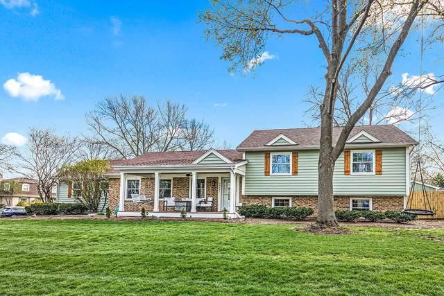 2S081 Big Horn Drive, Wheaton, IL 60189 (MLS #11052567) :: Helen Oliveri Real Estate