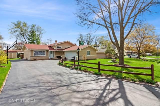 247 Robinson Lane, Westmont, IL 60559 (MLS #11052647) :: RE/MAX IMPACT
