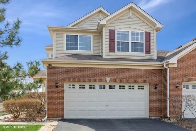 101 Briarwood Drive, Gilberts, IL 60136 (MLS #11052997) :: Helen Oliveri Real Estate