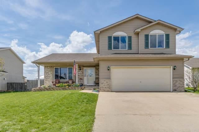 1309 Gilray Drive, Joliet, IL 60431 (MLS #11053091) :: Ani Real Estate