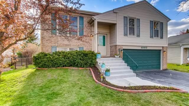 4960 Somerton Drive, Hoffman Estates, IL 60010 (MLS #11053324) :: RE/MAX Next