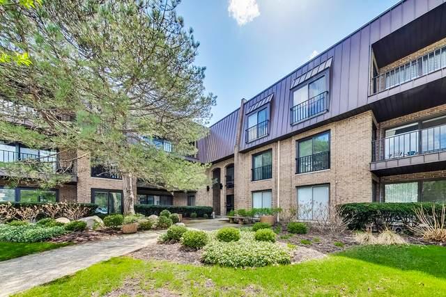 1 Court Of Harborside Drive #203, Northbrook, IL 60062 (MLS #11053397) :: Helen Oliveri Real Estate
