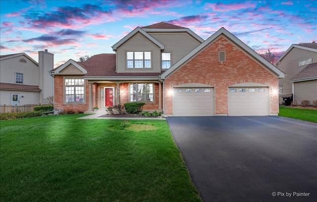 1163 Pheasant Ridge Drive, Lake Zurich, IL 60047 (MLS #11053562) :: Helen Oliveri Real Estate