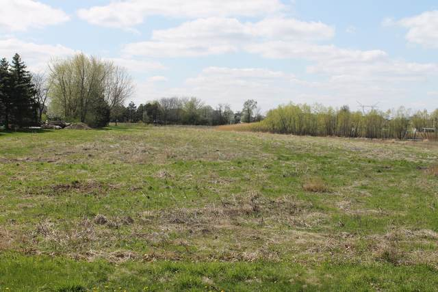 Lot 3 S Mc Kinley Woods Road, Channahon, IL 60410 (MLS #11053611) :: O'Neil Property Group