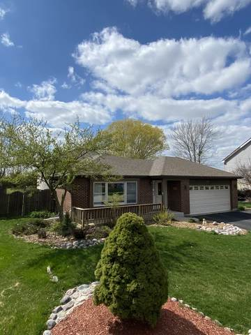 7925 W Carrie Court, Frankfort, IL 60423 (MLS #11053894) :: RE/MAX IMPACT