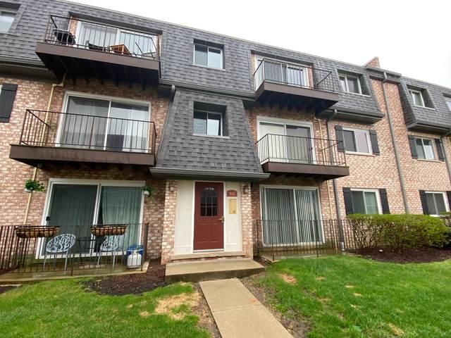 916 S Plum Grove Road #124, Palatine, IL 60067 (MLS #11054084) :: Helen Oliveri Real Estate