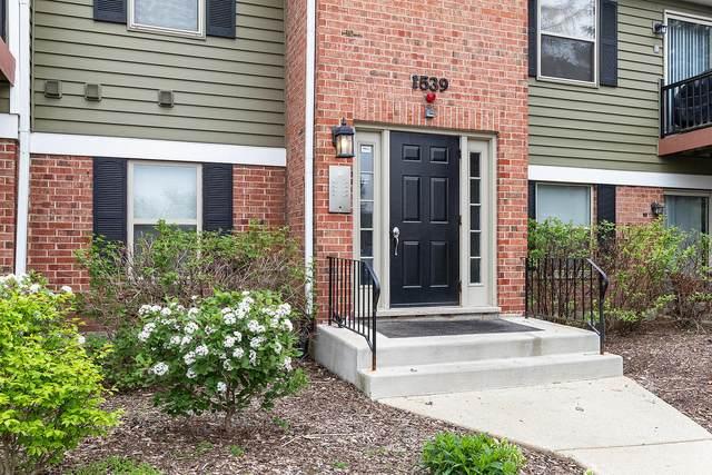 1539 S Raymond Drive #102, Naperville, IL 60563 (MLS #11054184) :: Littlefield Group