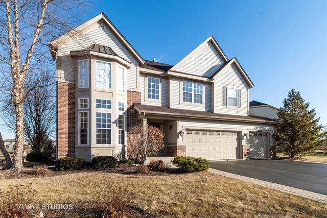 26224 Whispering Woods Circle, Plainfield, IL 60585 (MLS #11054531) :: Helen Oliveri Real Estate