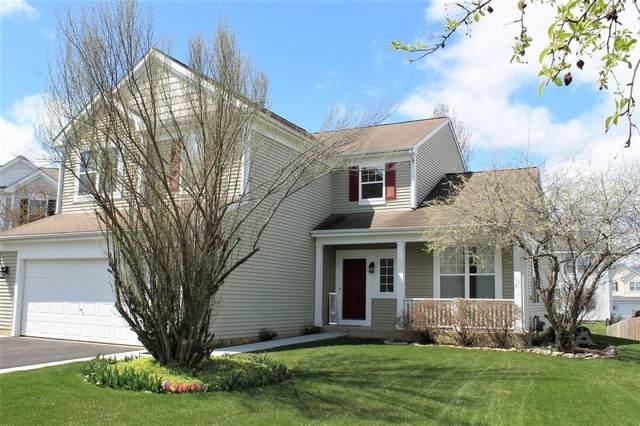 154 Blue Heron Court, Round Lake, IL 60073 (MLS #11054859) :: Helen Oliveri Real Estate