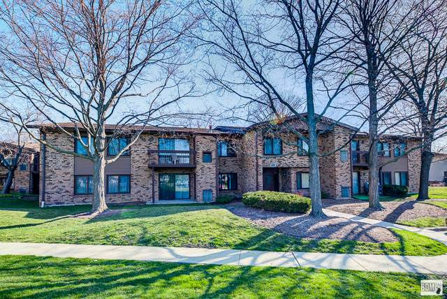 1120 E Randville Drive 102C, Palatine, IL 60074 (MLS #11054923) :: Helen Oliveri Real Estate