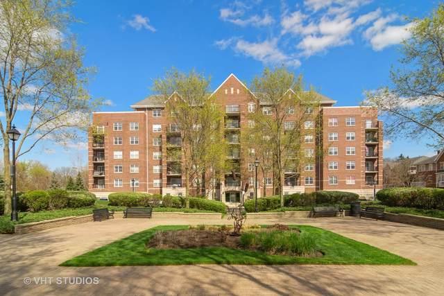 410 W Mahogany Court #403, Palatine, IL 60067 (MLS #11055168) :: Helen Oliveri Real Estate