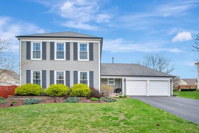 4305 Oak Knoll Lane, Hoffman Estates, IL 60192 (MLS #11055330) :: BN Homes Group