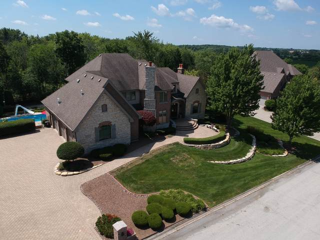 10921 Royal Oaks Lane, Orland Park, IL 60467 (MLS #11055844) :: Schoon Family Group