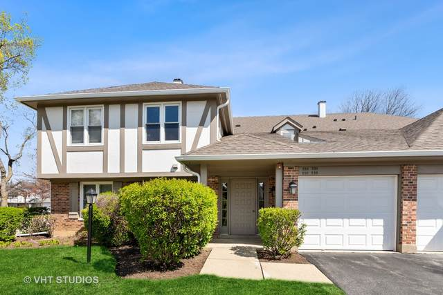 220 Coventry Circle #220, Vernon Hills, IL 60061 (MLS #11055912) :: The Spaniak Team