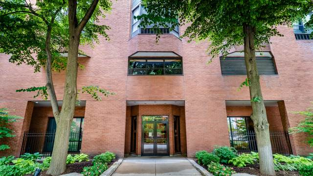 899 S Plymouth Court #1309, Chicago, IL 60605 (MLS #11055985) :: RE/MAX IMPACT