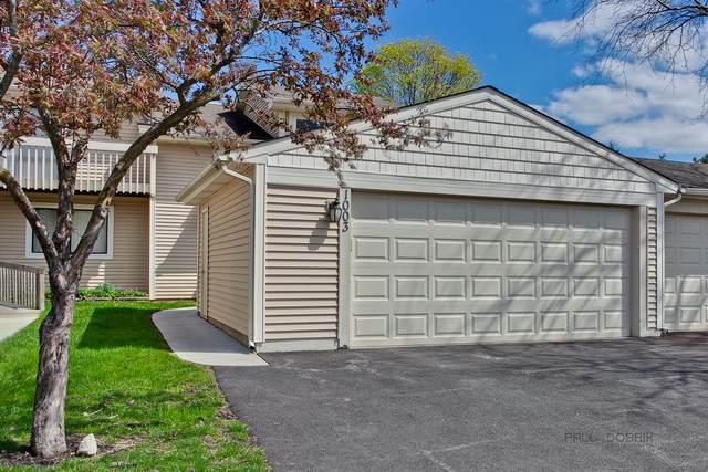 1003 Stockton Court, Vernon Hills, IL 60061 (MLS #11056043) :: Littlefield Group
