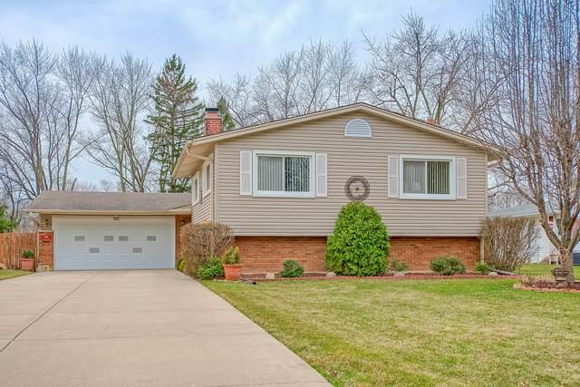 912 Greenfield Court, Mount Prospect, IL 60056 (MLS #11056063) :: Helen Oliveri Real Estate