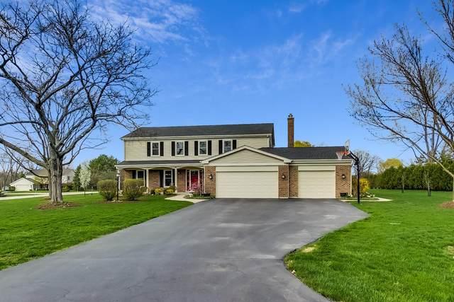 1251 Terre Drive, Libertyville, IL 60048 (MLS #11056079) :: Helen Oliveri Real Estate