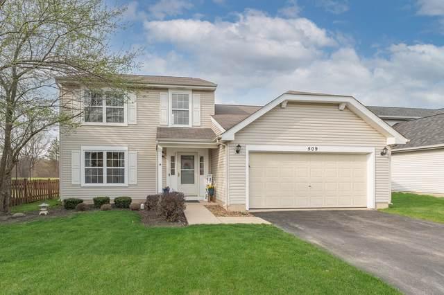 509 Ryegrass Court, Aurora, IL 60504 (MLS #11056239) :: Littlefield Group