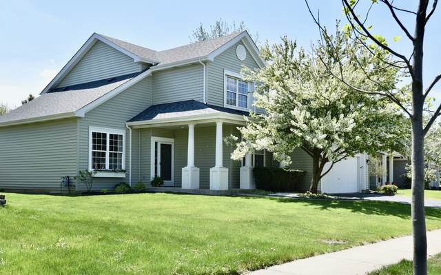1389 Lily Cache Lane, Bolingbrook, IL 60490 (MLS #11056270) :: Littlefield Group
