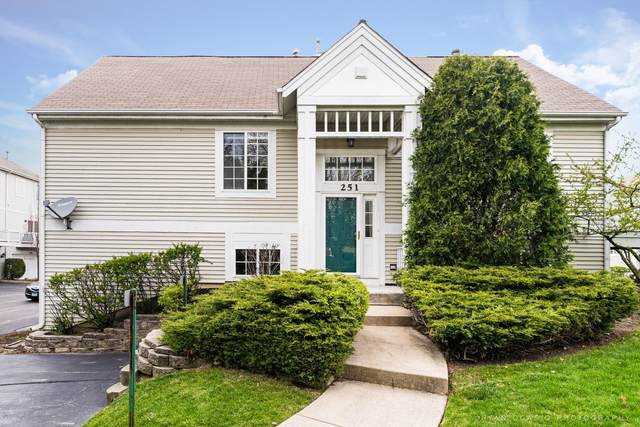 251 Concord Drive, Glendale Heights, IL 60139 (MLS #11056294) :: The Dena Furlow Team - Keller Williams Realty