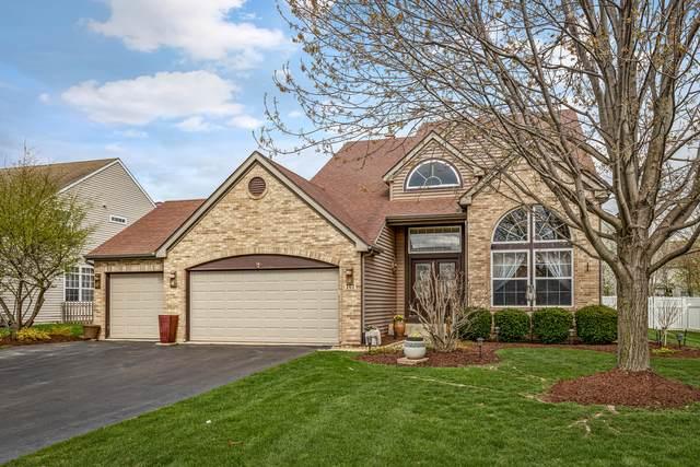 161 Rushmore Drive, Bartlett, IL 60103 (MLS #11056295) :: Ryan Dallas Real Estate