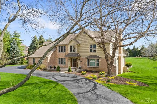 5N601 Chambellan Lane, Wayne, IL 60184 (MLS #11056445) :: Ryan Dallas Real Estate