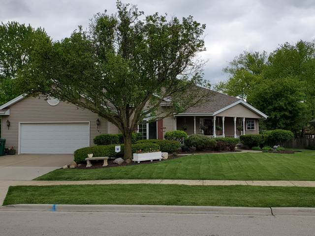 125 Bush Drive, Elwood, IL 60421 (MLS #11056490) :: Littlefield Group