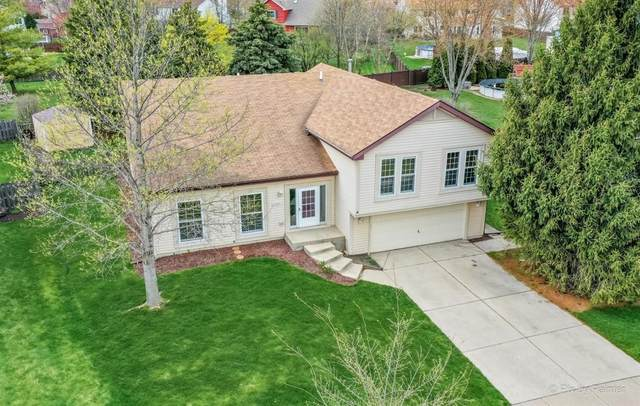 1343 Knollwood Circle, Crystal Lake, IL 60014 (MLS #11056653) :: RE/MAX IMPACT