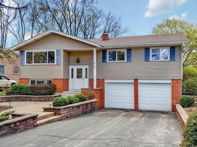 813 Dublin Drive, Mundelein, IL 60060 (MLS #11056689) :: Helen Oliveri Real Estate