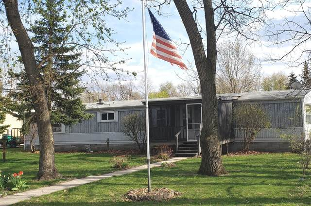 725 E Richard Court, Godley, IL 60407 (MLS #11056940) :: Carolyn and Hillary Homes