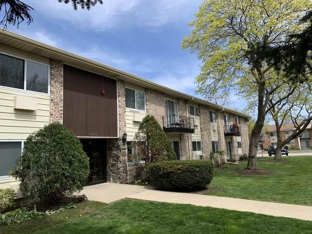 8996 Kennedy Drive 2B, Des Plaines, IL 60016 (MLS #11057132) :: Helen Oliveri Real Estate