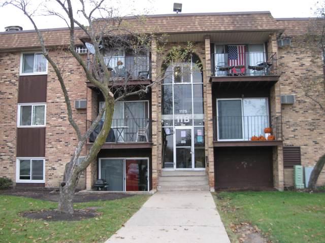1175 Higgins Quarters Drive 11-210, Hoffman Estates, IL 60169 (MLS #11057195) :: RE/MAX IMPACT