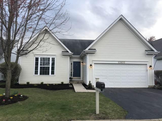 13800 S Redbud Drive, Plainfield, IL 60544 (MLS #11057202) :: RE/MAX IMPACT