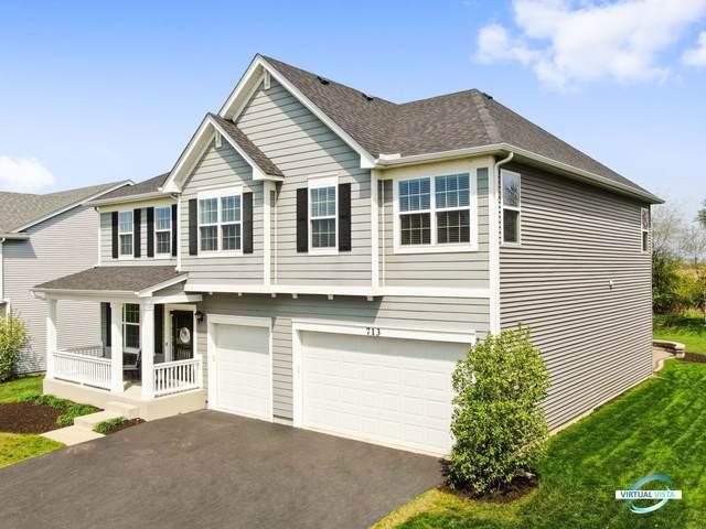 713 Millersburg Street, Oswego, IL 60543 (MLS #11057421) :: Helen Oliveri Real Estate