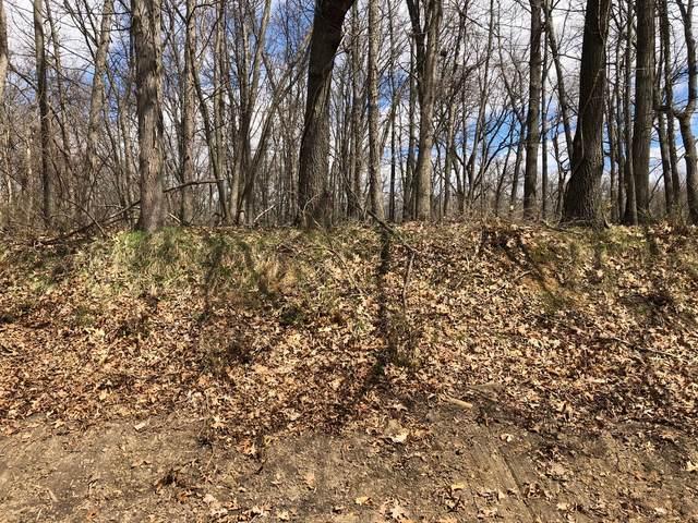 16 Cedar Lane S, Putnam, IL 61560 (MLS #11057543) :: Helen Oliveri Real Estate