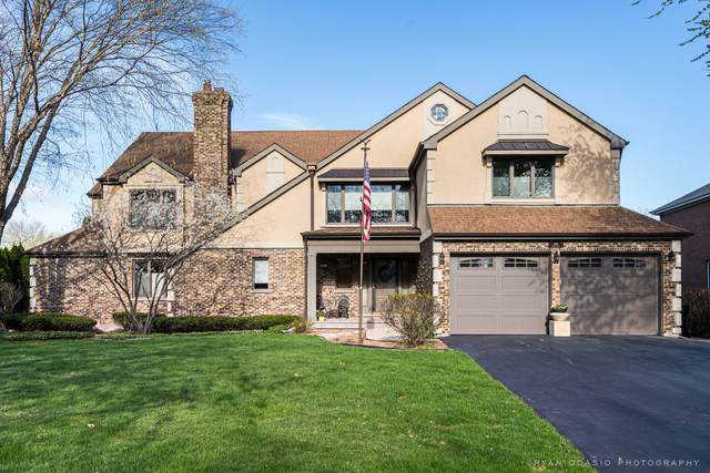 246 Eagle Court, Bloomingdale, IL 60108 (MLS #11057644) :: Janet Jurich