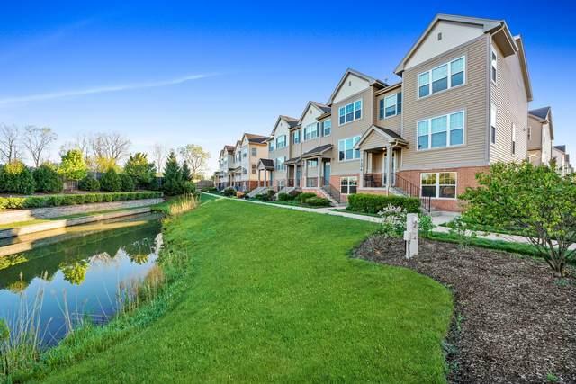 1208 Evergreen Avenue, Des Plaines, IL 60016 (MLS #11057671) :: Helen Oliveri Real Estate