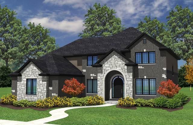 14250 W James Lane, Homer Glen, IL 60491 (MLS #11057867) :: RE/MAX IMPACT
