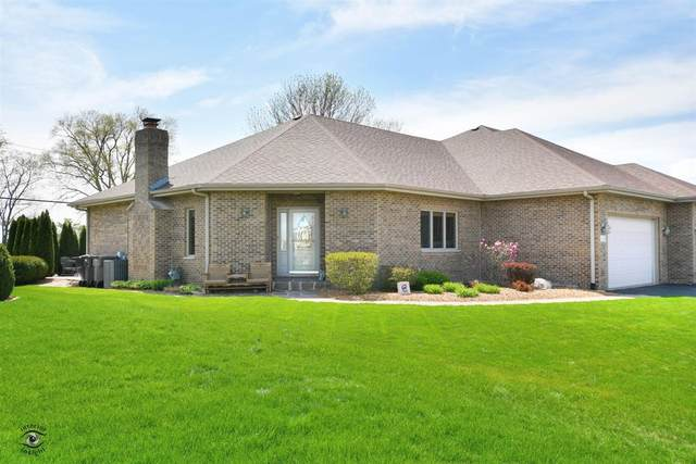 21391 Falcon Boulevard, Wilmington, IL 60481 (MLS #11057911) :: Helen Oliveri Real Estate