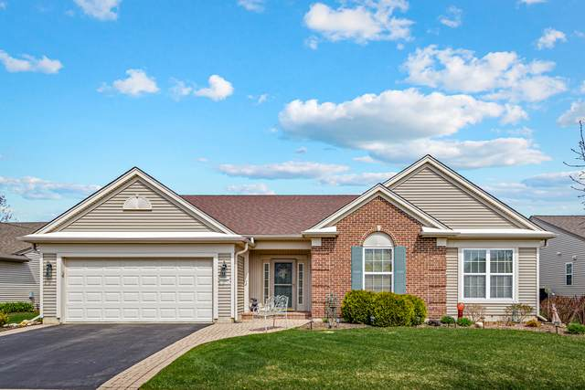 14062 Francesca Cove, Huntley, IL 60142 (MLS #11058037) :: Lewke Partners