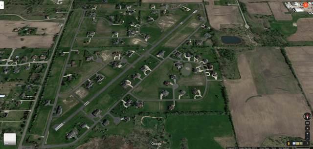 6857 W Foss Road, Monee, IL 60449 (MLS #11058059) :: Ani Real Estate