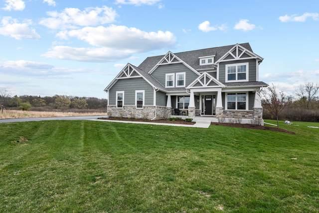 25677 W Tara Drive, Barrington, IL 60010 (MLS #11058152) :: Helen Oliveri Real Estate