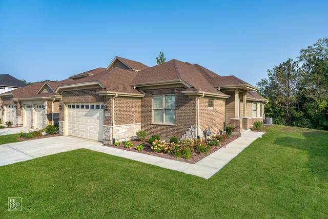11203 Tuscany Lane, Lemont, IL 60439 (MLS #11058209) :: Littlefield Group