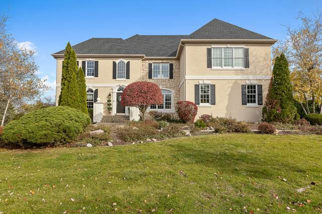 8733 Polo Ridge Court, Burr Ridge, IL 60527 (MLS #11058266) :: RE/MAX IMPACT