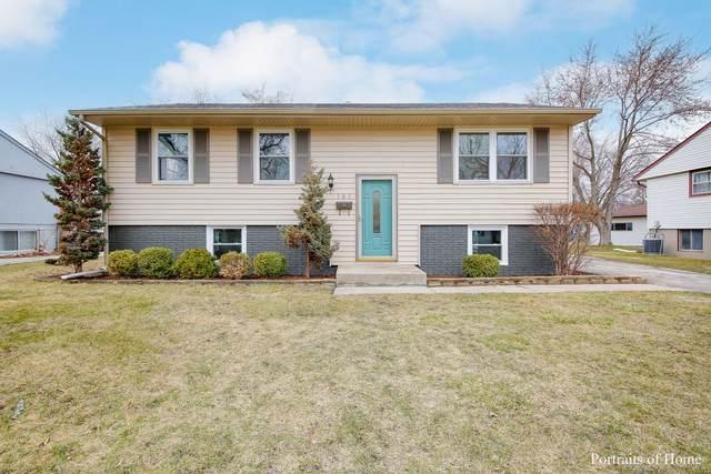 305 E Birch Drive, Glenwood, IL 60425 (MLS #11058649) :: Helen Oliveri Real Estate