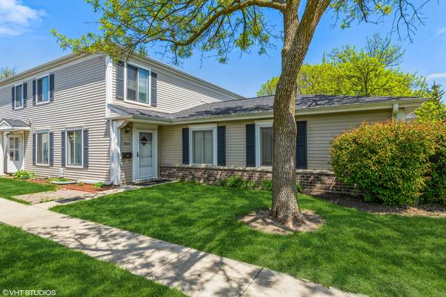 1343 Cove Drive 206B, Prospect Heights, IL 60070 (MLS #11058690) :: Littlefield Group